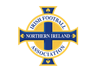northern ireland fa